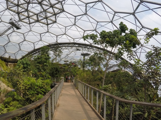 Inside the biome